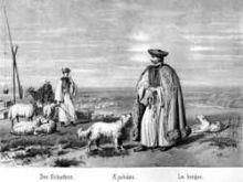 Hungarian shepherd